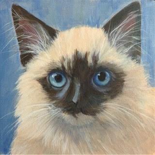 """""""Blue eyes"""" original fine art by Lyn Gill"""