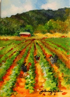 """Produce Row"" original fine art by JoAnne Perez Robinson"