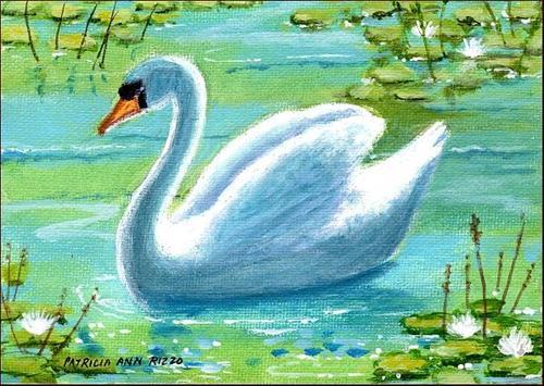 """""""The Swan"""" original fine art by Patricia Ann Rizzo"""
