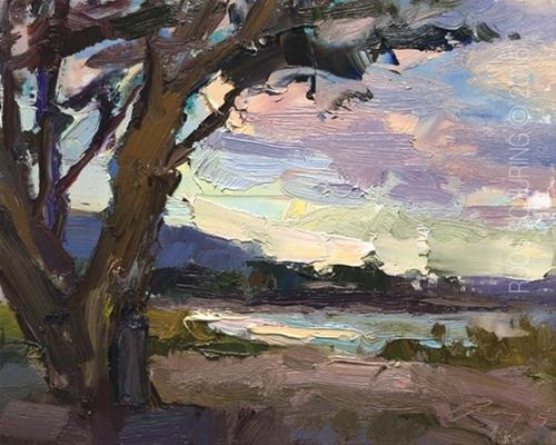 """Carmel Beach – See Through Tree – Morning Light"" original fine art by Roos Schuring"