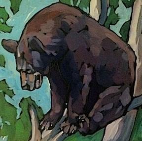 """""""Bruin Looking Down"""" original fine art by Kat Corrigan"""