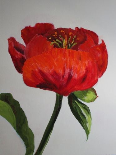 """""""Red Peony Contemporary Flower Paintings by Arizona Artist Amy Whitehouse"""" original fine art by Amy Whitehouse"""