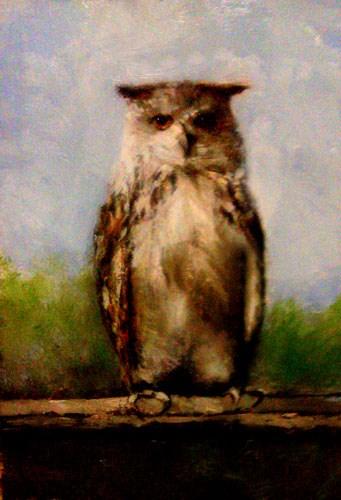 """Hooo"" original fine art by Bob Kimball"