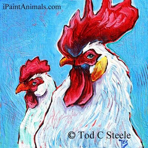 """""""Chicken Painting, Rooster Painting, Behind Every Good Rooster is a Good Hen (pecking) - 12x12 - by Tod C Steele"""" original fine art by Tod Steele"""