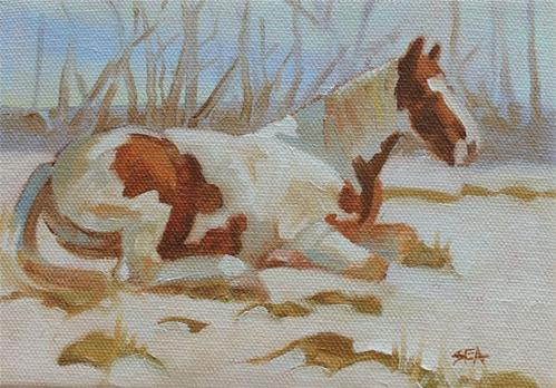 """Winter Siesta"" original fine art by Susan Ashmore"