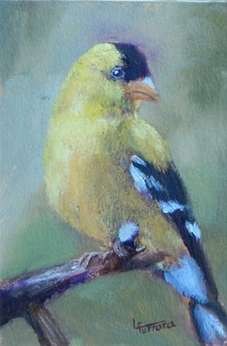 """""""Goldfinch 2"""" original fine art by Lina Ferrara"""