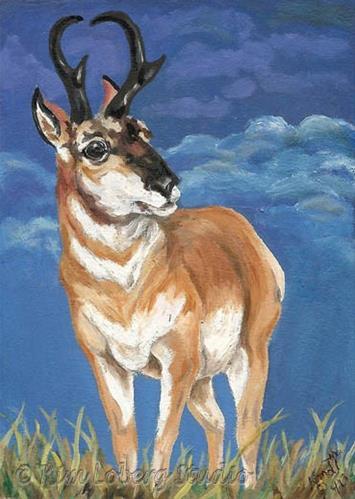 """Watching the Storm"" original fine art by Kim Loberg"