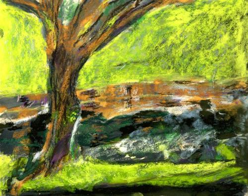 """Pond Reflections Point Richmond"" original fine art by Donna Crosby"