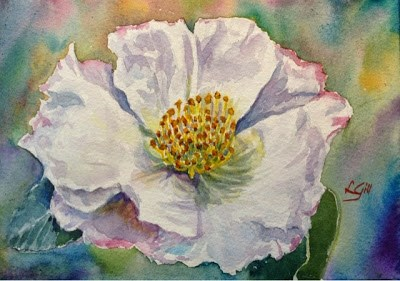 """""""Day 30 - Pink-tinged Camellia"""" original fine art by Lyn Gill"""