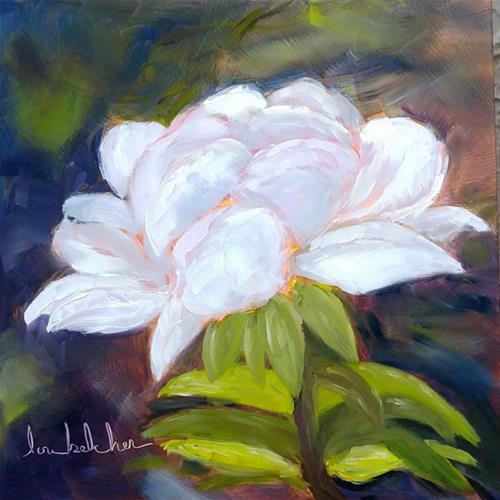 """White Rose"" original fine art by Lou Belcher"