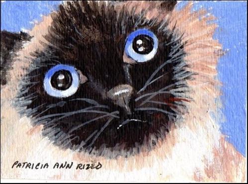 """""""Himalayan Eyes"""" original fine art by Patricia Ann Rizzo"""