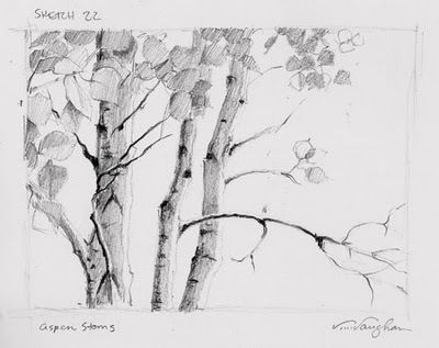 """Aspen Stems__sketch, trees, lesson,"" original fine art by V.... Vaughan"