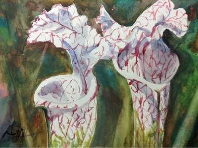 """#1/30in30 - Pitchers"" original fine art by Lyn Gill"