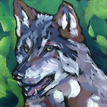"""Timberwolf Grin"" original fine art by Kat Corrigan"