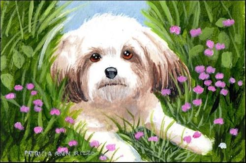 """""""Little Dog in the Flowers"""" original fine art by Patricia Ann Rizzo"""