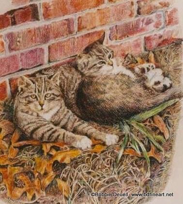 """""""#15 2 Tabbies in the Leaves"""" original fine art by Bobbie Deuell"""