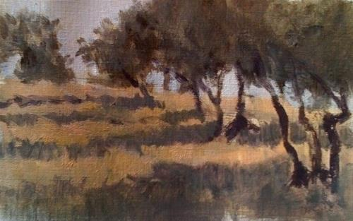 """Olive trees at sunset"" original fine art by Christine Bayle"