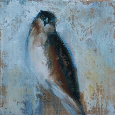 """""""Little Hawk"""" original fine art by Susan Hammer"""