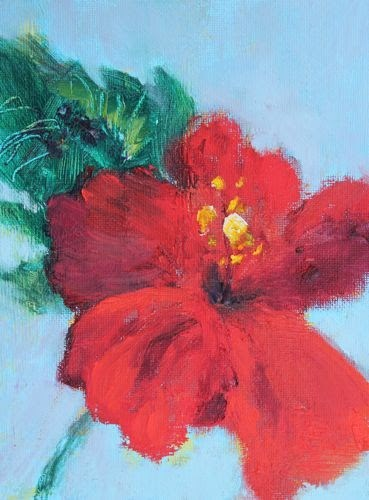 """""""Hibiscus, Contemporary Floral Paintings by Arizona Artist Amy Whitehouse"""" original fine art by Amy Whitehouse"""