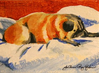 """""""Lucy...Doing What She Does Best"""" original fine art by JoAnne Perez Robinson"""