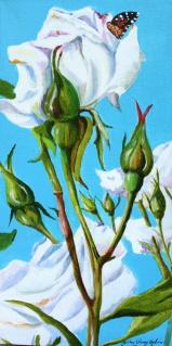 """Pillow Soft"" original fine art by JoAnne Perez Robinson"