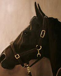 """Pocketchange (Stable Name - Wellsley)"" original fine art by Donna Thomas"