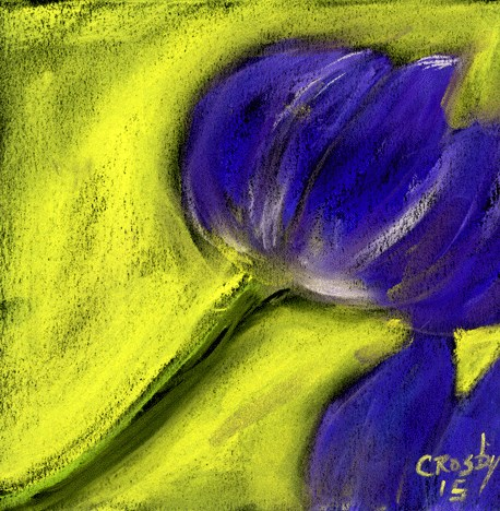 """Robust"" original fine art by Donna Crosby"