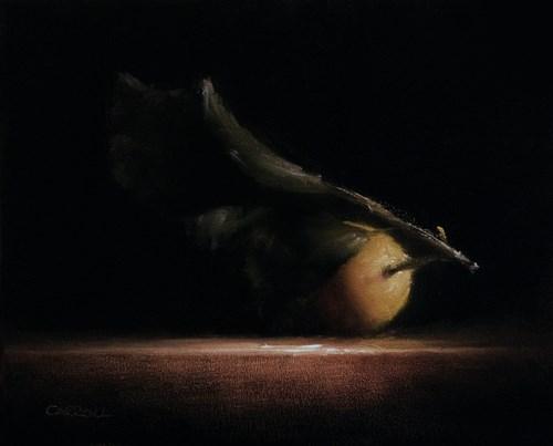 """""""Lemon Leaf"""" original fine art by Neil Carroll"""