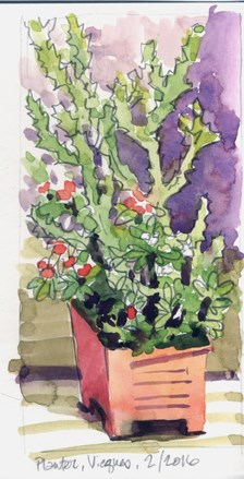 """""""A few more sketches from Vieques"""" original fine art by Kathy Weber"""