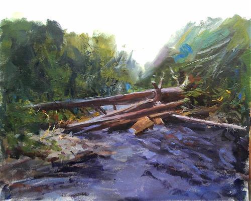 """Colorado river"" original fine art by Richard Schiele"