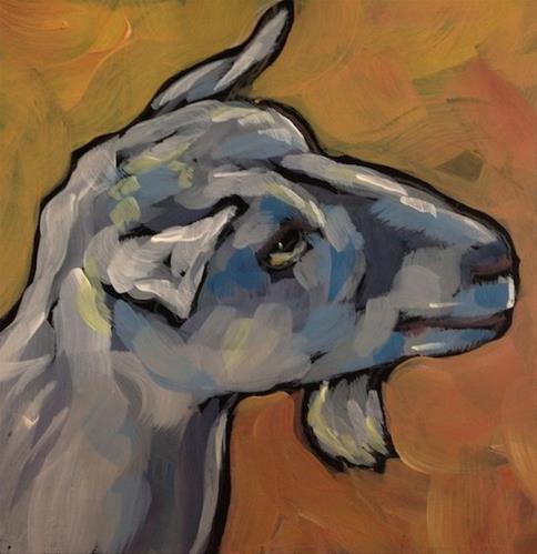 """White Goat Profile"" original fine art by Kat Corrigan"