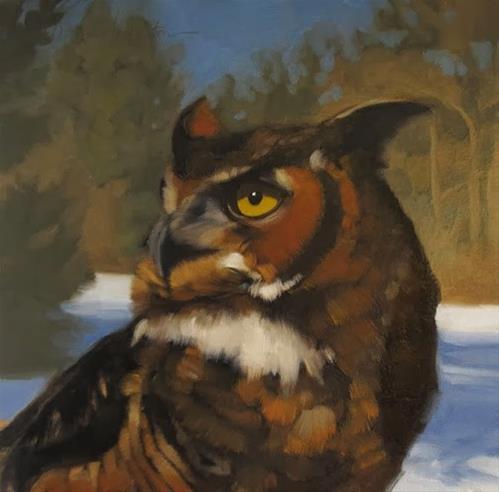 """Owl painting Ohio Bird Sanctuary"" original fine art by Diane Hoeptner"