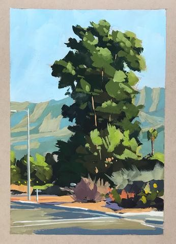 """Downtown Trees, Carpinteria"" original fine art by Sharon Schock"