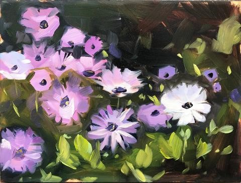 """Backyard Daisies, Plein air oil painting"" original fine art by Sharon Schock"