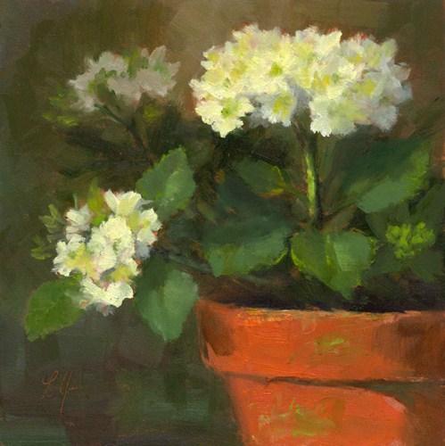 """HYDRANGEAS"" original fine art by Linda Jacobus"