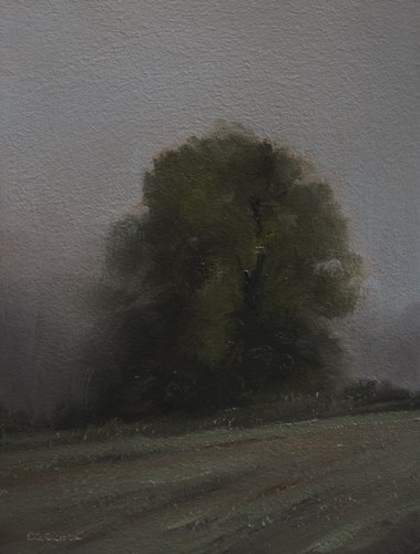 """Ridgeline Tree"" original fine art by Neil Carroll"