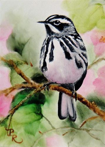 """Flying Zebra"" original fine art by Paulie Rollins"