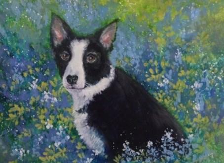 """Portrait of Cinder"" original fine art by Margie Whittington"