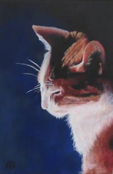 """Sleepy Tabby"" original fine art by ~ces~ Christine E. S. Code"