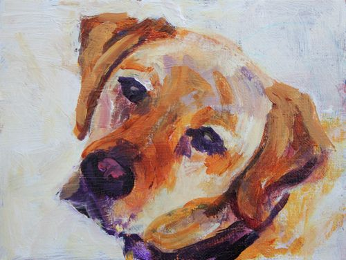 """Best Buddy Dog Portrait in Acrylic, Contemporary Dog Portraits by Arizona Artist Amy Whitehouse"" original fine art by Amy Whitehouse"