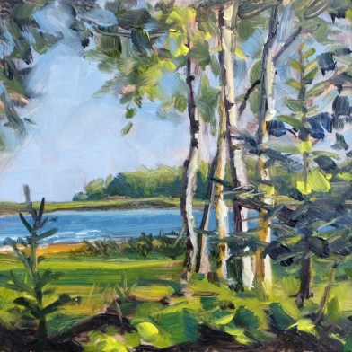 """""""Oil painting of Birch Trees"""" original fine art by Deb Anderson"""