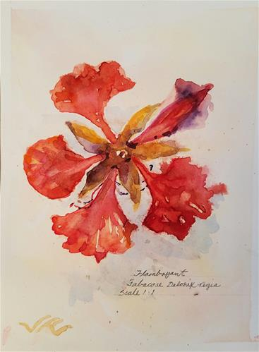 """Flamboyant-l"" original fine art by Jean Krueger"