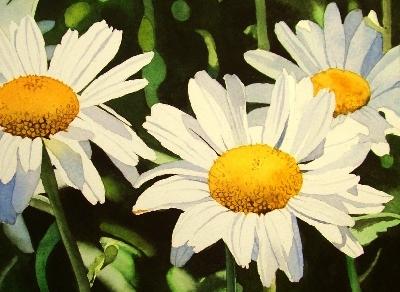 """White Daisys"" original fine art by Jacqueline Gnott, TWSA, WHS"