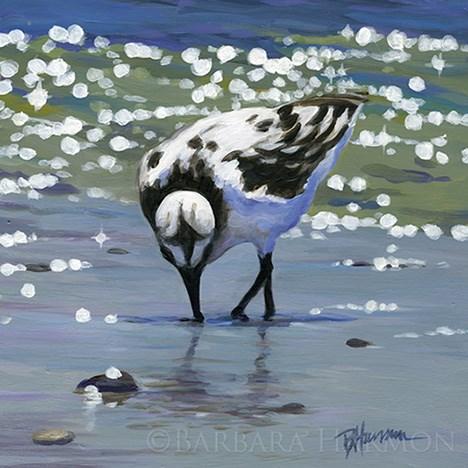 """Sanderling Snacking"" original fine art by Barbara Harmon"