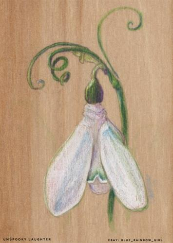 """Springy Snowdrop ACEO"" original fine art by A.E.E. Miller"