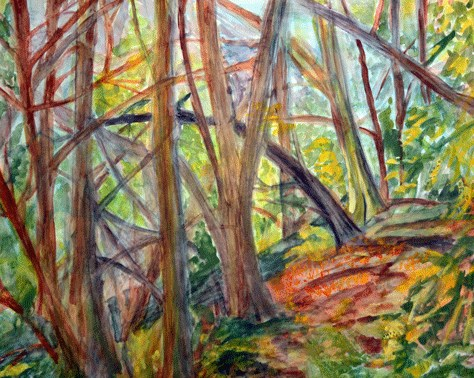 """Wood In Redwoods"" original fine art by Donna Crosby"