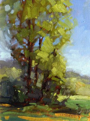 """Afternoon Highlights"" original fine art by Laurel Daniel"