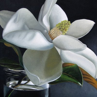 """Magnolia No. 3  6x6"" original fine art by M Collier"