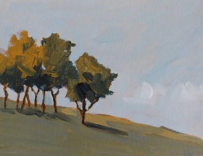 """""""Trees in Light"""" original fine art by Pamela Munger"""