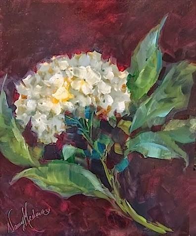 """Soft Landing White Hydrangea by Floral Artist Nancy Medina"" original fine art by Nancy Medina"